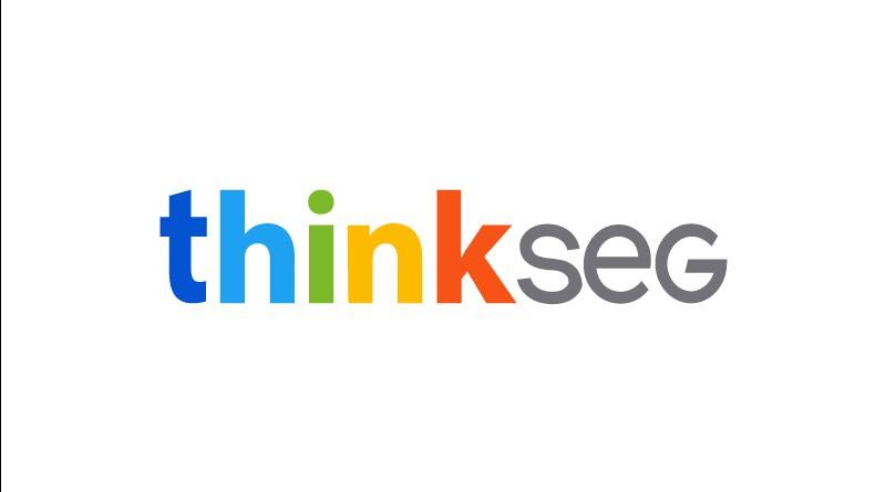 logo-thinkseg